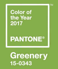 El color del año by PANTONE (c)