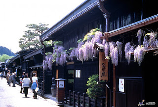 Unique Japan Tours Takayama Old Streets Flowers