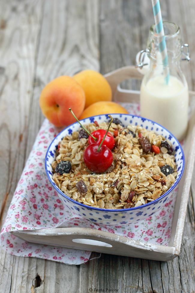 granola homemade con amarene, uvetta e bacche di goji ( vegan )