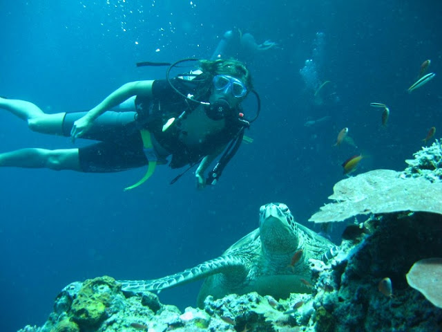 8 best places for scuba diving in the world - Sipadan dive centre ...