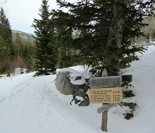 Trail sign along the way to Alberta Falls