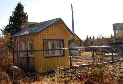 shedoi wickes shed roof shingles. Black Bedroom Furniture Sets. Home Design Ideas