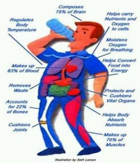 makan vitamin, minum air