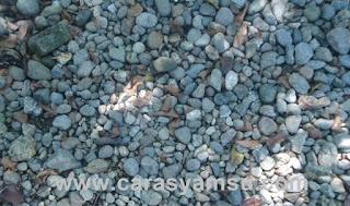 Batu Akik Karangsambung