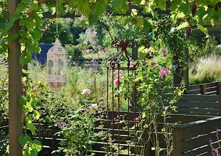 Haven før min nuværende