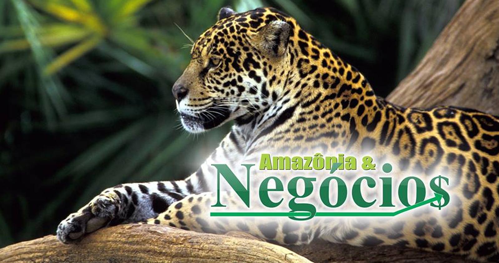 Amazoniaon