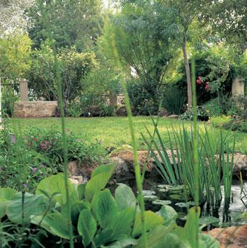 C mo decorar un jard n peque o y que parezca grande for Como decorar un jardin sin cesped