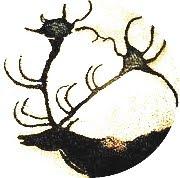 www.sjamanisme.no
