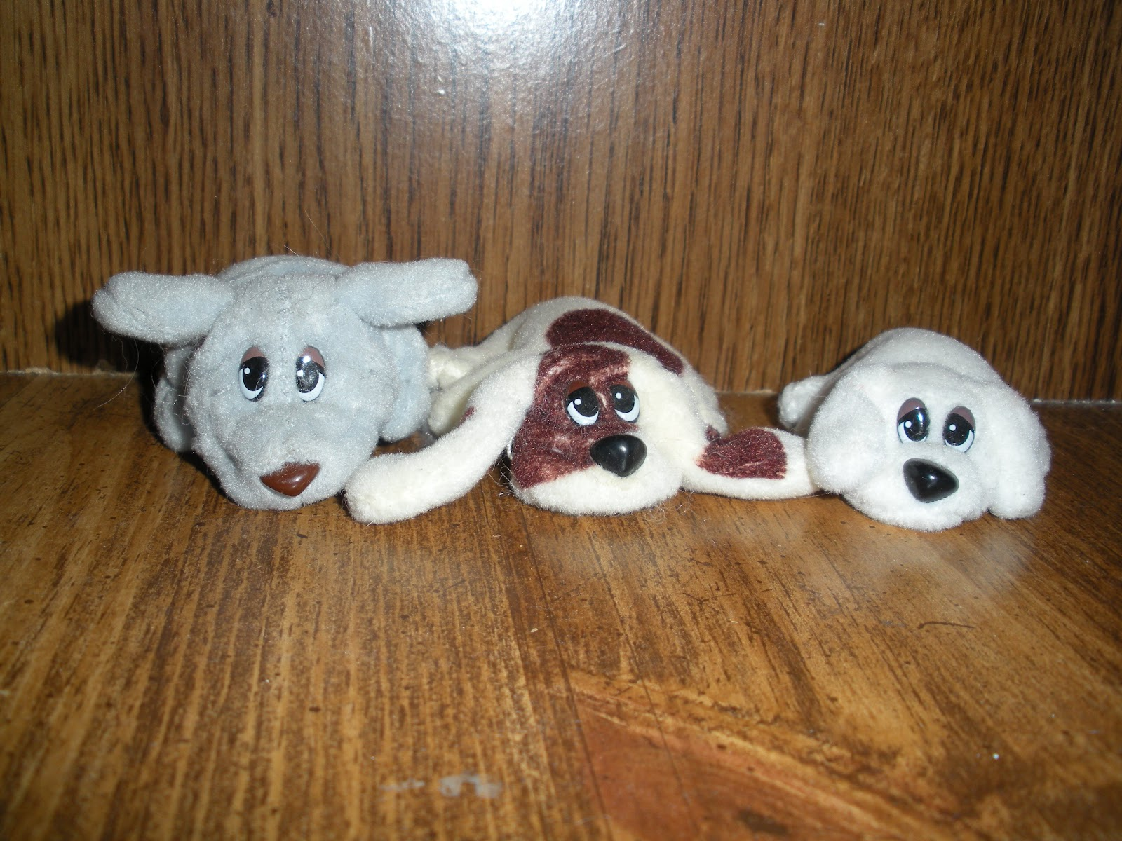 My Life and Dreams Pound Puppies