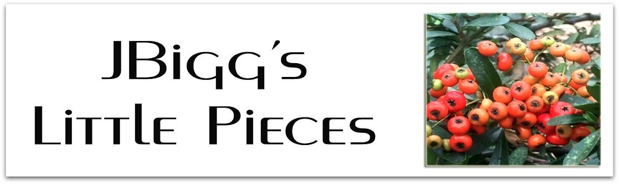 JBigg's Little Pieces