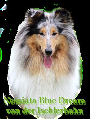 http://hairyhope.blogspot.cz/p/nessiata-blue-dream-von-der-ischlerbahn.html