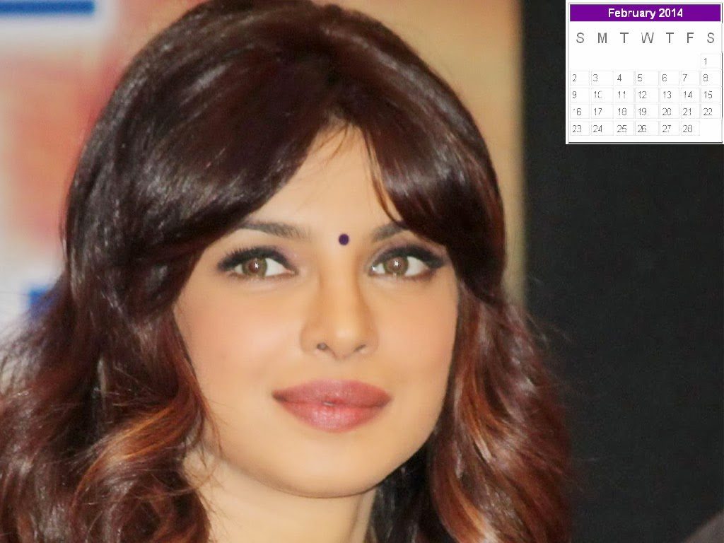 Priyanka Chopra New Year 2014 Calendar | Hot Celebs