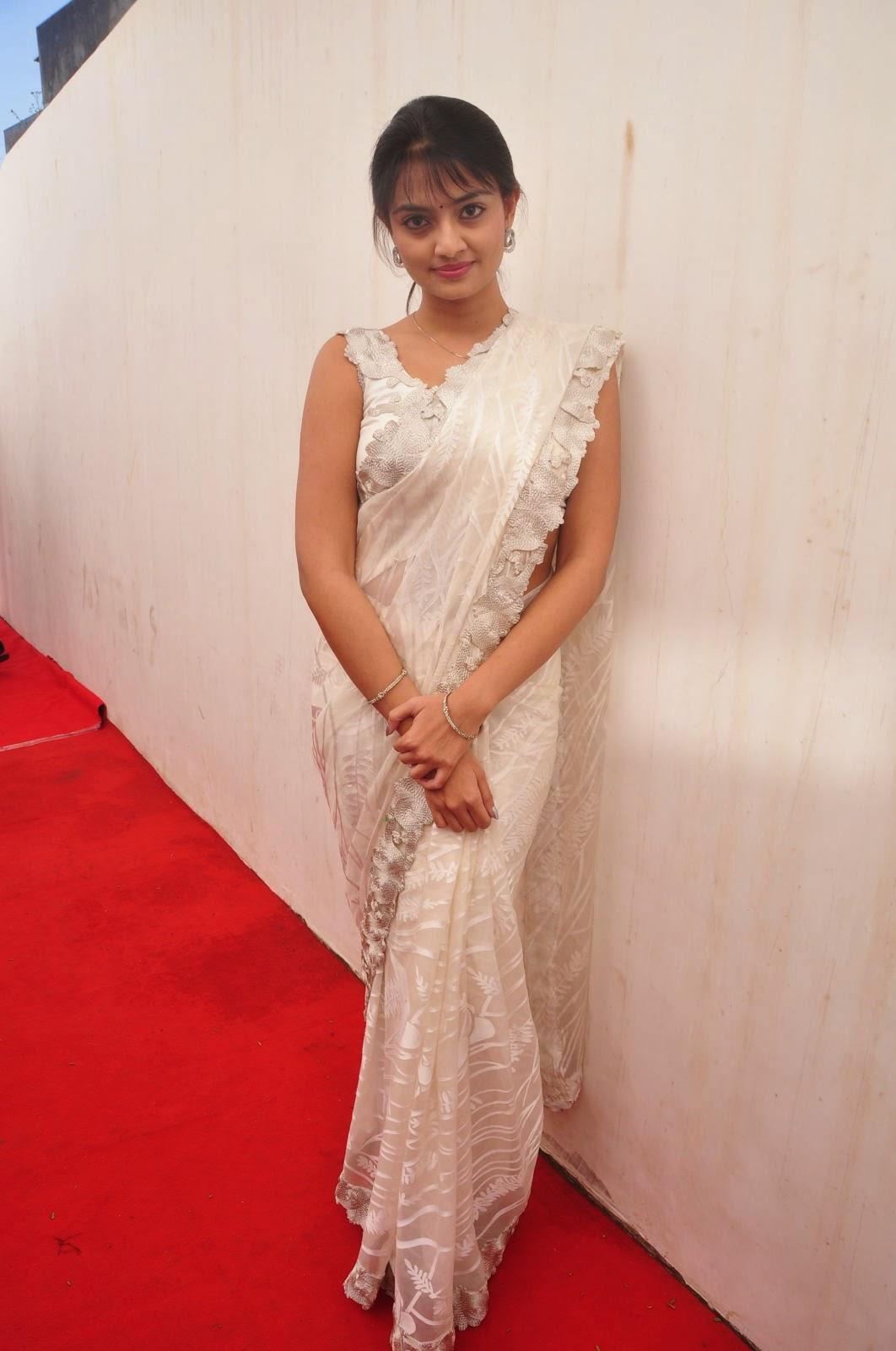 Nikitha Narayan saree photo shoot-HQ-Photo-13