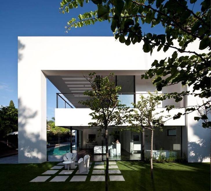 Tree in the backyard of Modern Bauhaus Mansion In Israel