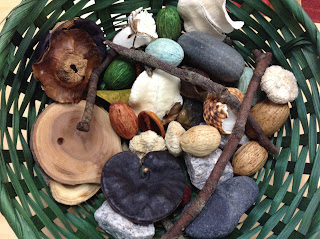 Basket full of things from nature.
