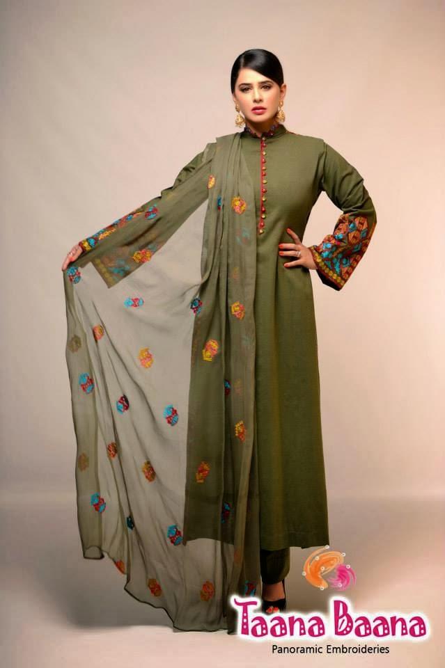 2014 Pakistani Winter Dress