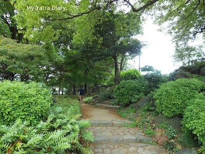 Green pathway at Hibiya Garden - Tokyo, Japan