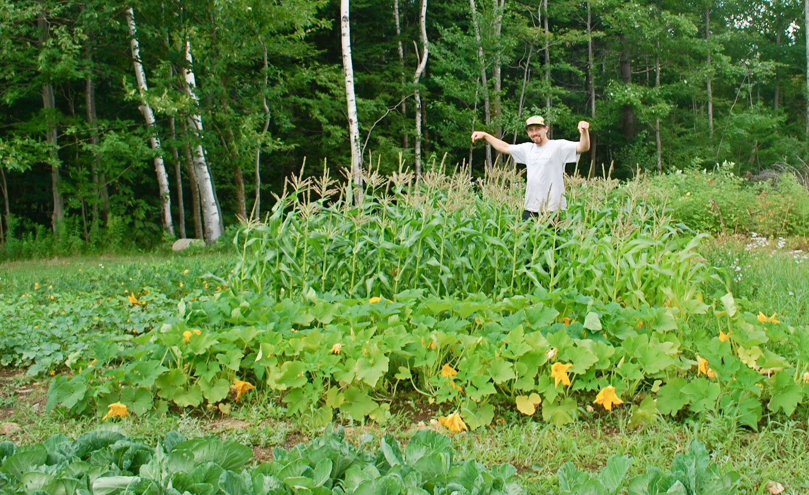 AMC Trails Blog Camp Dodge Garden Expands AMCs Forest Stewardship
