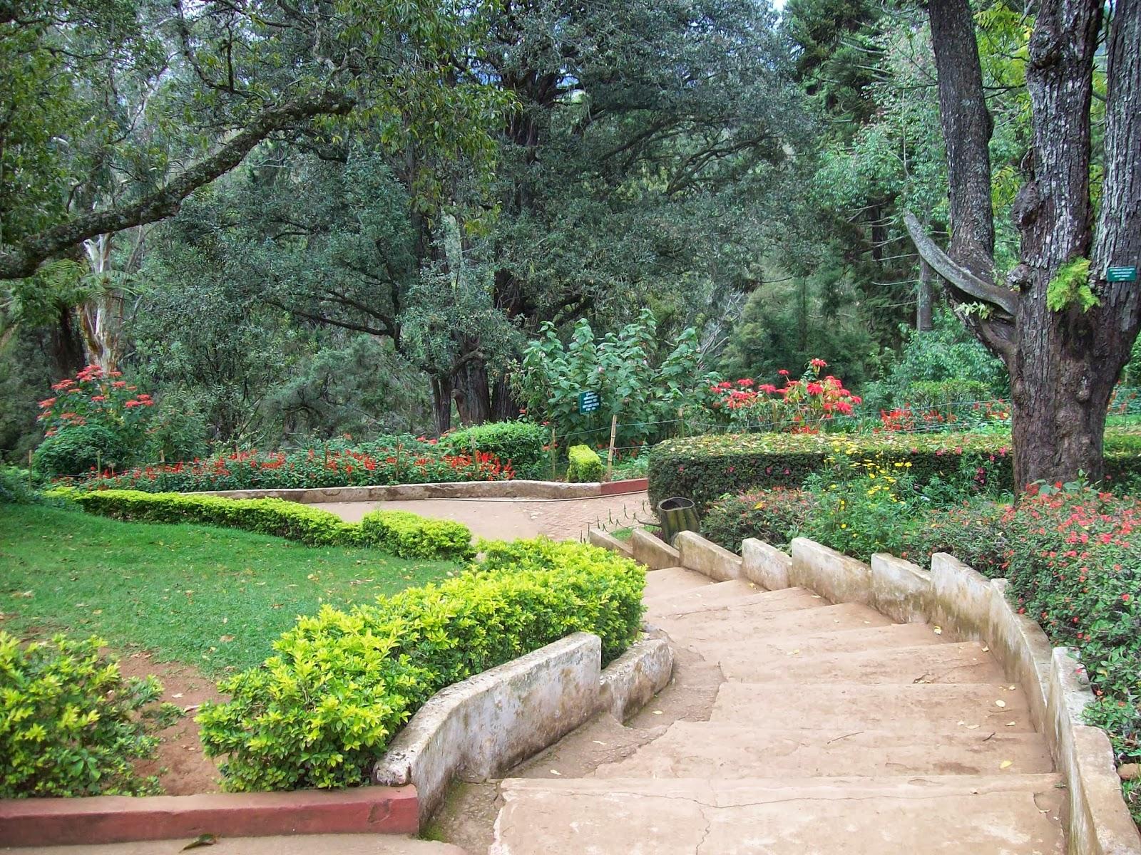 Nature Park Dr
