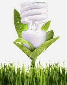 Odor Killing Bulbs kill germs too!