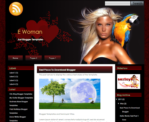 E Woman Blogger Theme