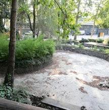 Parte la manutenzione del laghetto della stazione