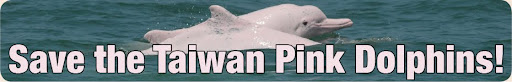 Save the Taiwan Pink Dolphins