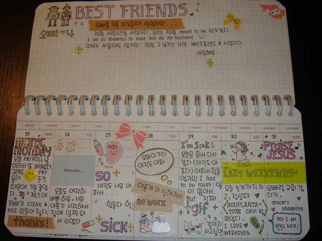 allison  how to decorate your personal diary