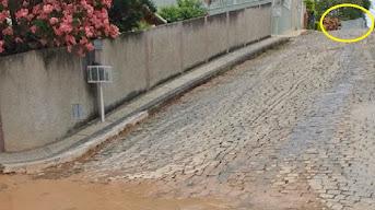 A crônica omissão da fiscalização de posturas que transtorna moradores da rua Hercília Ribeiro Ferr