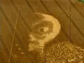 Esta figura aparecio en un plantio