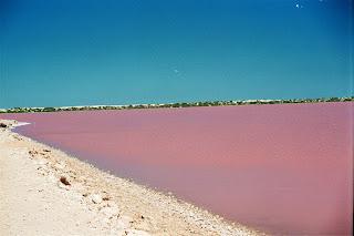 pink+lake+(2).jpg