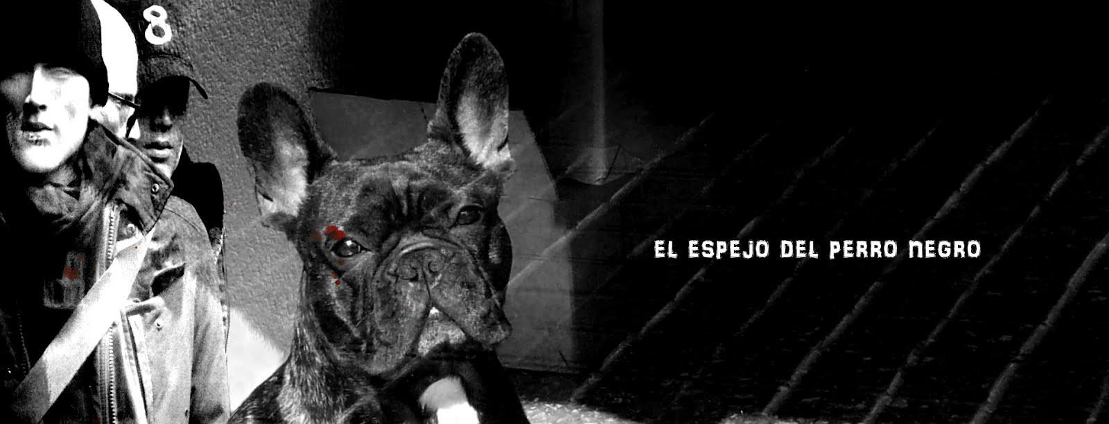 El espejo del perro negro