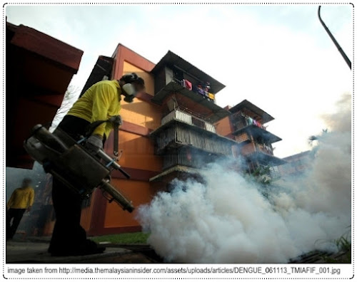 The Four Seasons of Malaysia - Dengue