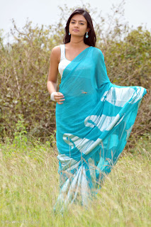 nikitha_narayana_hot_saree_stills_005.jpg