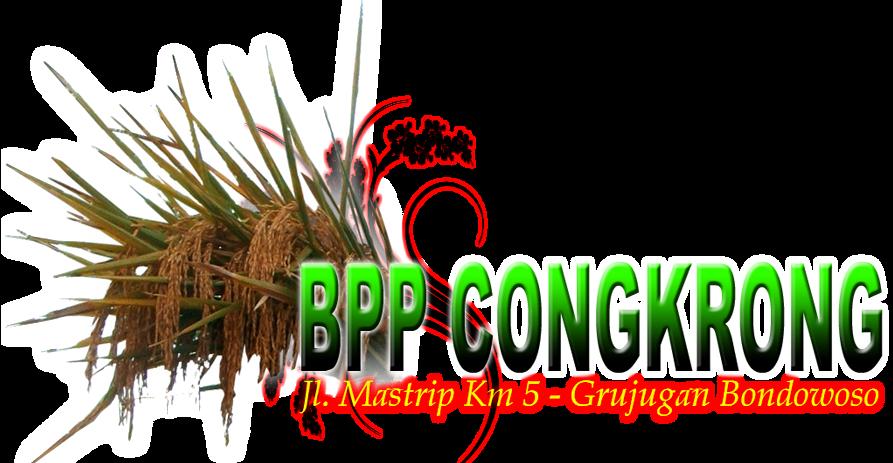 BPP CONGKRONG