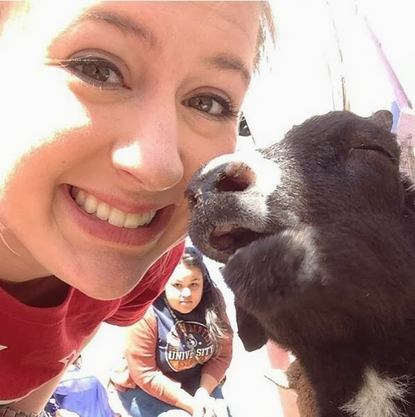 Funny animals of the week - 31 January 2014 (40 pics), girls take a picture with cow