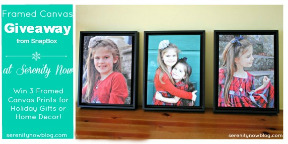 Framed Canvas Prints Giveaway at Serenity Now! #SnapBoxPrints #spon