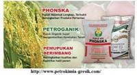 Lowongan Kerja D3 PT Petrokimia Gresik
