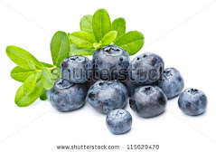 Blueberry for Our Longevity!
