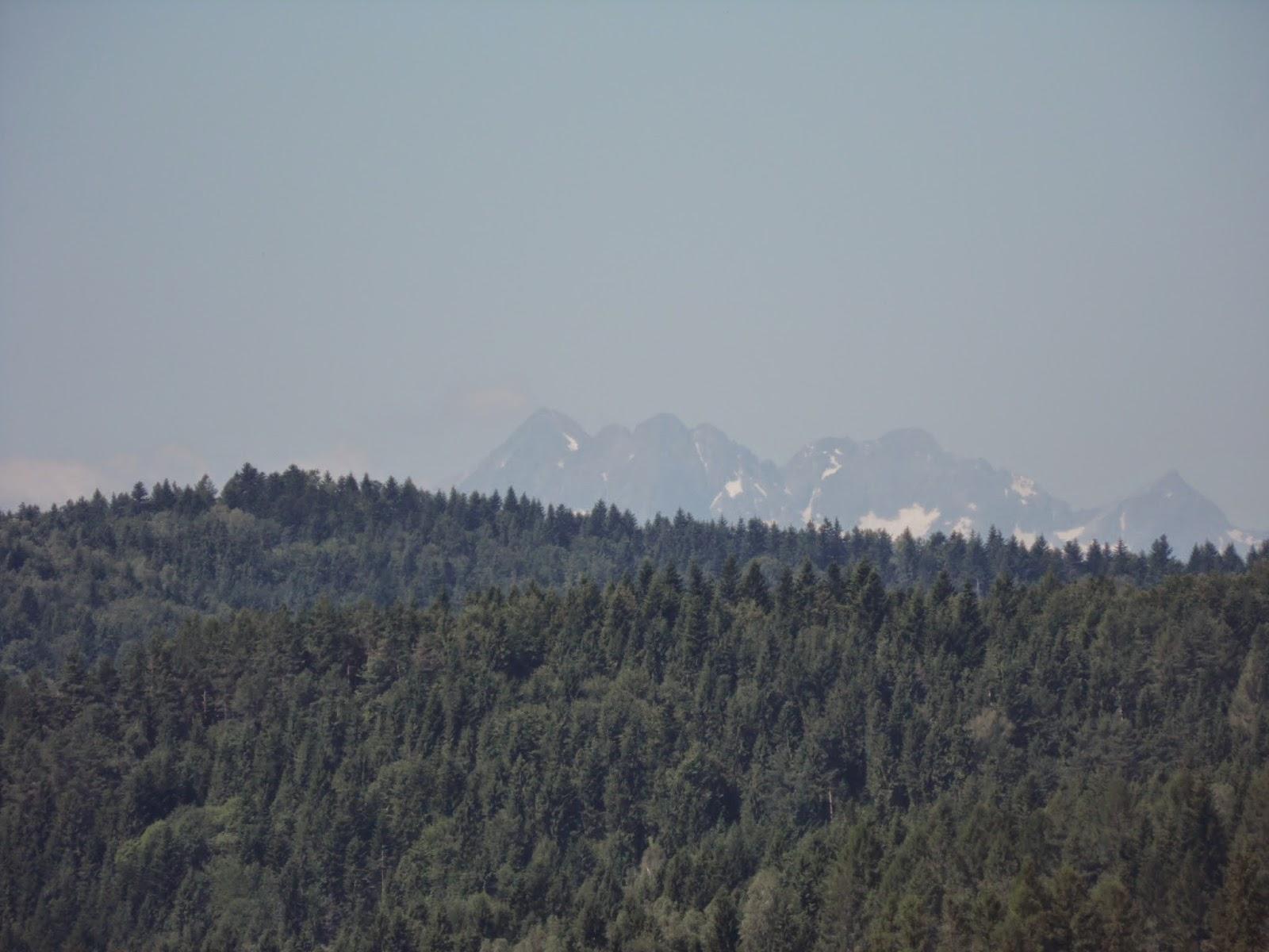 Widok gór na szlaku z Muszyny na Jaworzynę Krynicką
