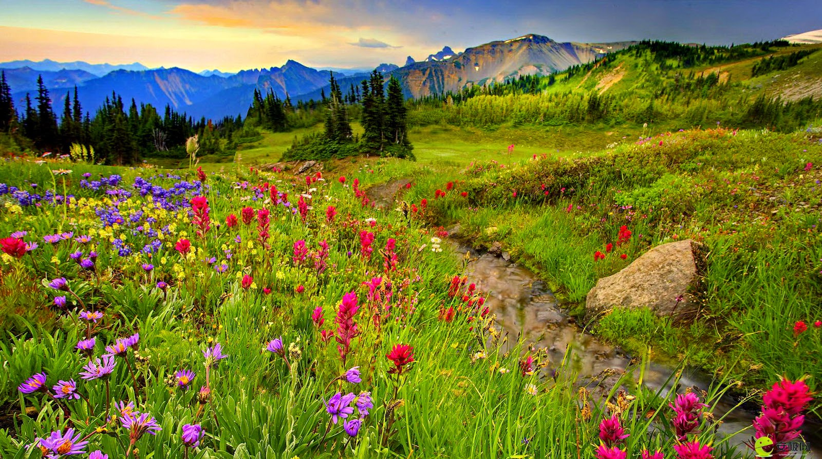 mountain meadow media center welcome to mras mountain