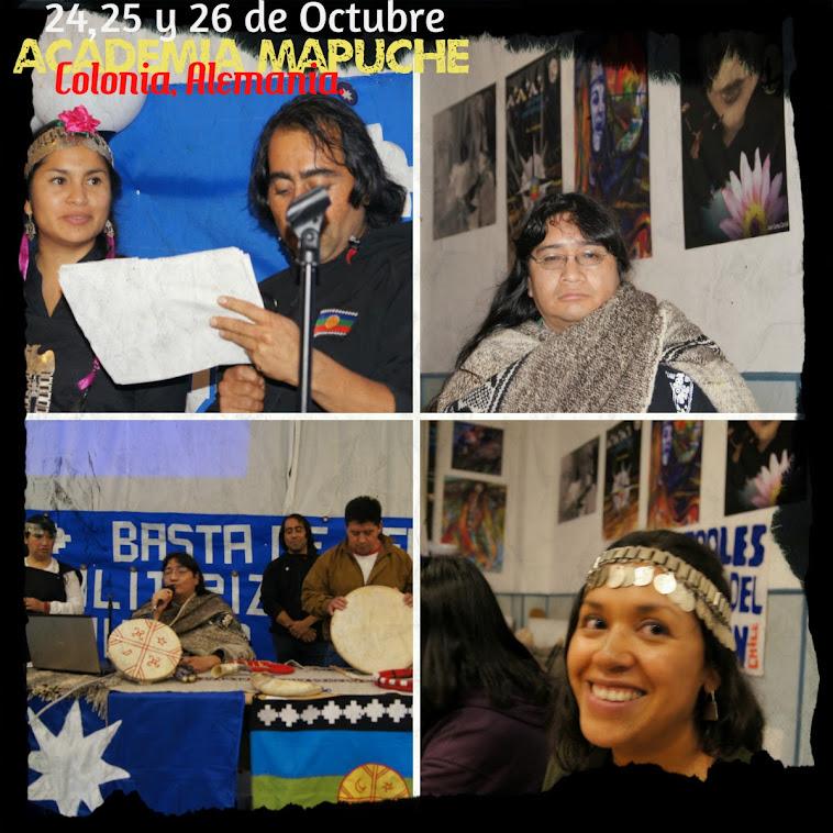 Academia mapuche