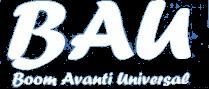 Boom Avanti Universal