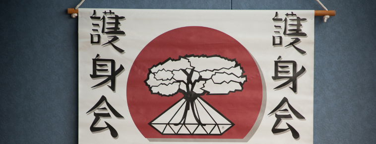 Ecole de Goshinkaï Ju-Jutsu d' Albi