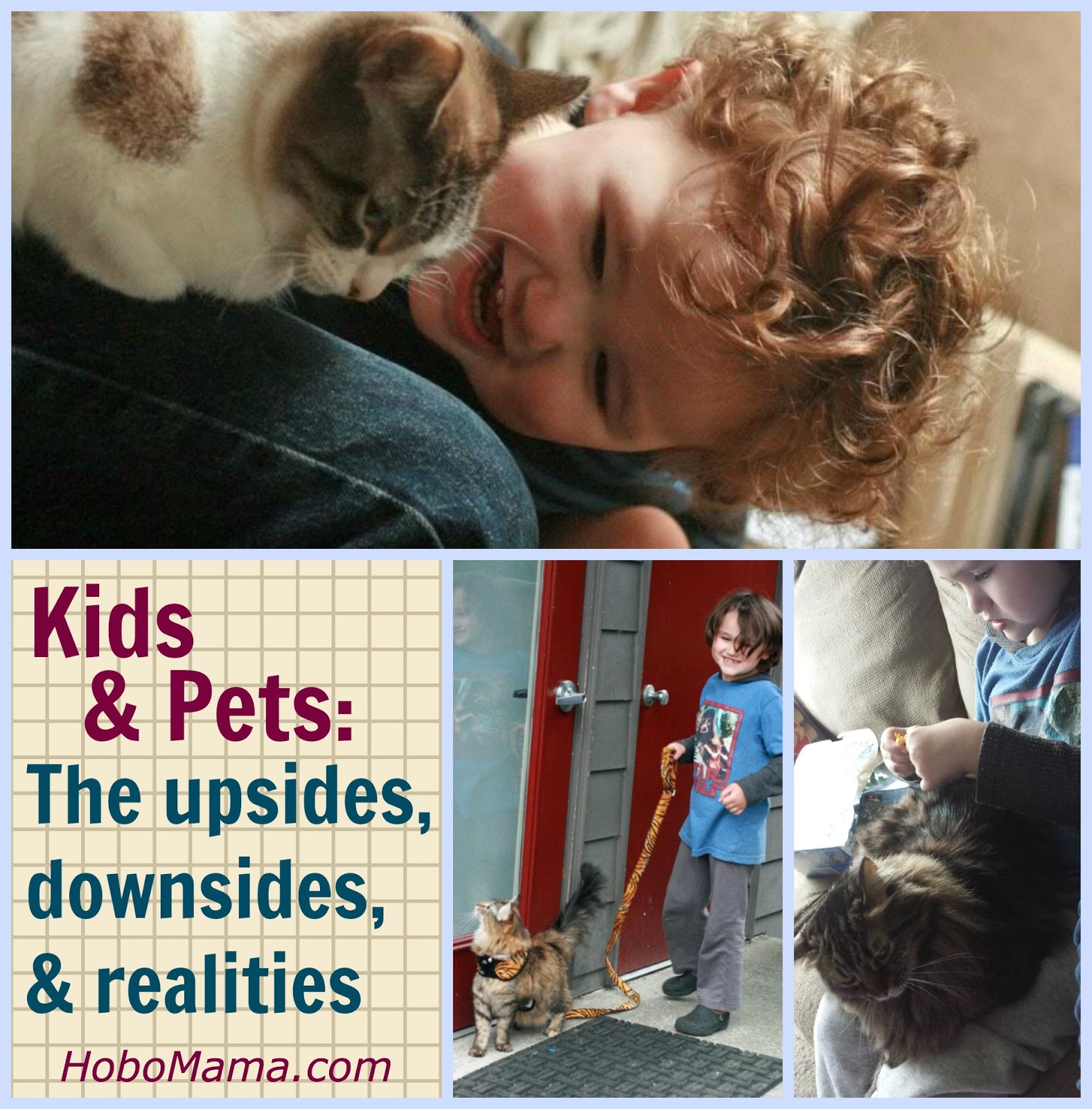 Pets & kids: The realities == Hobo Mama
