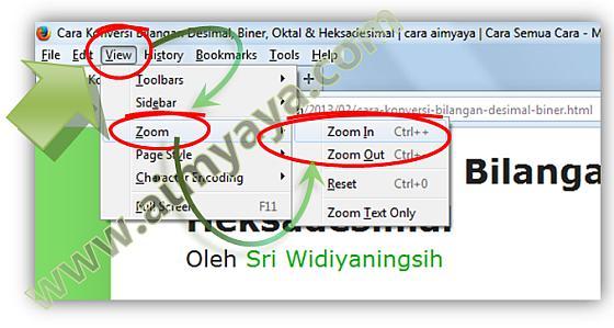 Gambar: Cara Zoom-in atau Zoom Out di Mozilla Firefox