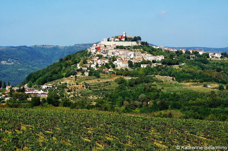 Motovun Istria Croatia Travel