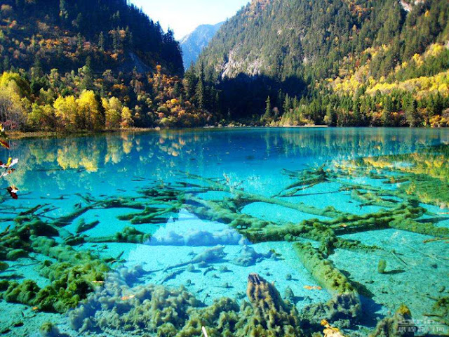 Crystalline Turquoise Lake Jiuzhaigou National Park China