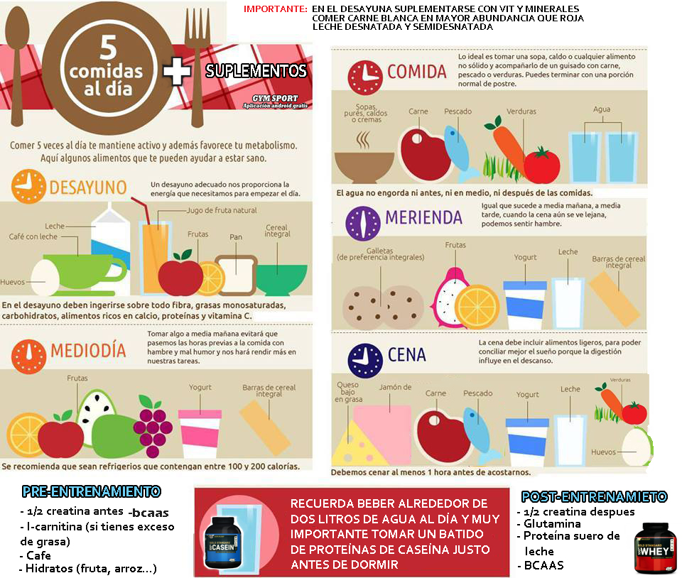 rutina para dieta anabolica