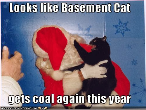 Black Cat and Santa